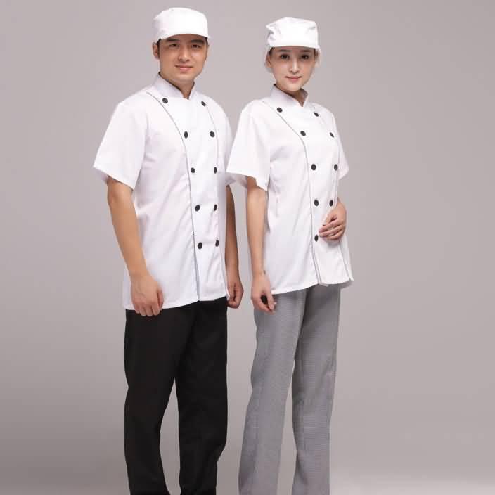 简洁夏季厨师服