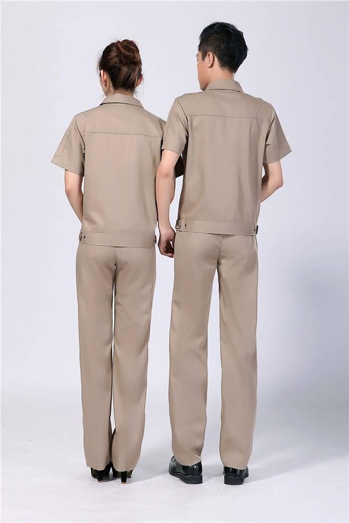 全棉夏季工作服背面图片