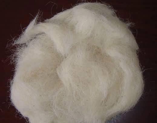 羊毛示意图