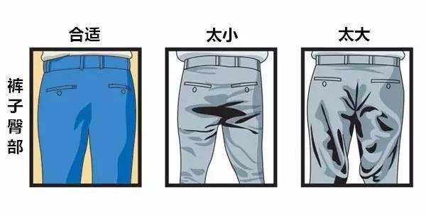 合身西裤臀部标准图示