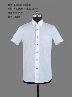 男士夏季蓝条纹短袖正规领衬衫